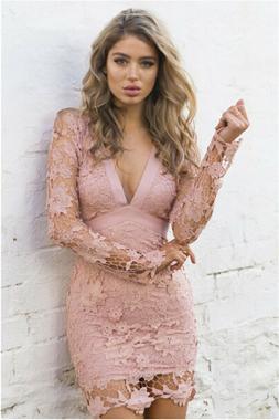 Woman's Deep V Neck Backless Lace Pencil Mini Dress Holidays